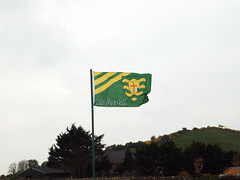 Donegal County Flag