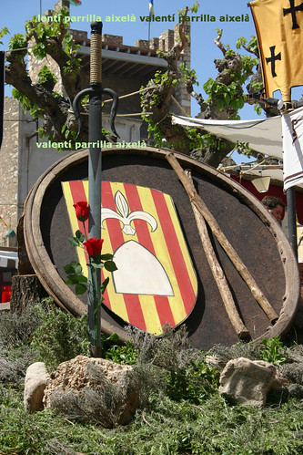 20070422-01-0137 : Icones de la Diada de Sant Jordi