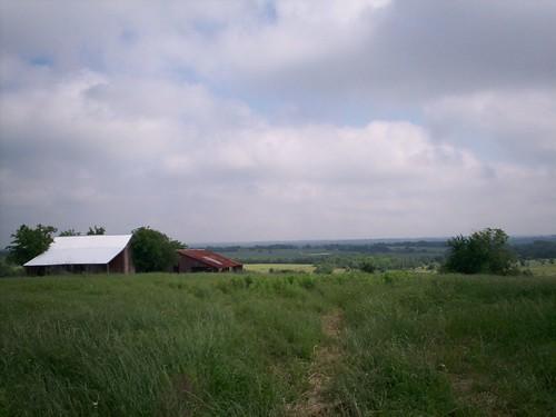 Texas Landscape I