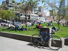 Hanging out at Victor Steinbrueck Park