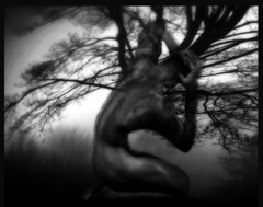 Pain.Surrealism.Nellie Vin (Nellie Vin) Tags: abstract tree art film photoshop blackwhite pain photographer masculine framedart surrealism fineart modernism wallart strong filmcamera collectible metaphor allegory limitededition symbolism fineartphotography decorativeart allegoric figurativeart artdealers yashicafx3super2000 printsforsale nellievin superbmasterpiece