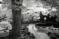 Angkor in B&W  (hk_traveller) Tags: travel bw white black canon ir photo asia cambodia flickr explore turbo filter siem reap thom infrared g1 rps angkor  canong1 093    top500   supershot turbophoto blackribbonbeauty bachspicsgallery