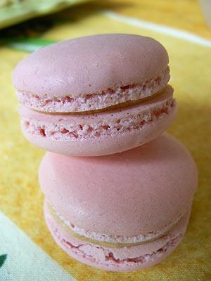 macarons caramel beurre salé.jpg