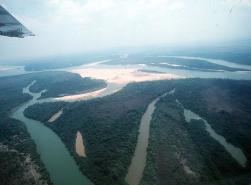 Selva Amazonia ricardoroman.cl