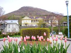 舊北海道廳函館支廳
