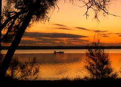 Going home (maureen_g) Tags: sunset sky lake colour reflection tree nature water beauty silhouette clouds australia questfortherest naturesfinest cotcpersonalfavorite outstandingshots abigfave impressedbeauty superhearts searchandreward auselite