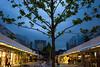 tree (johanna) Tags: tree geotagged dusk ynb brunswickcentre geo:lat=51524799 geo:lon=0123896