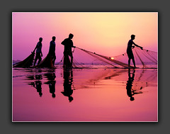 the last pull (!!sahrizvi!!) Tags: ocean pink pakistan sunset sea sun sunlight reflection net beach nature water beautiful silhouette canon fishing fisherman sand bravo asia fishermen outdoor dusk quality silhouettes powershot shore backlit karachi ruleofthirds seawater rizvi sahrizvi sarizvi saarc fl