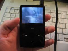 IMG_3596.JPG (Legodude522) Tags: video ipod screen repair lcd gen 5th