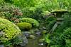 Lantern and stream (jidabug) Tags: bridge portland japanesegarden spring others stream lantern 0505 favoritegarden