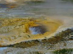 Upper Geyser Basin #7 (jimsawthat) Tags: rural wyoming uppergeyserbasin yellowstonenationalpark geyser thermalfeature