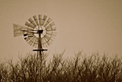 Windmill... (Steven Lively) Tags: trees sky windmill sepia vintage wind soe oldfashioned pictureperfect mywinners impressedbeauty