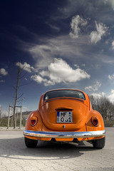 Low Orange 4 (Andreas Reinhold) Tags: orange bug beetle hdr type1 wolle photomatix loworange