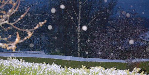 Snow. Again.