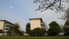 阿佐ヶ谷住宅