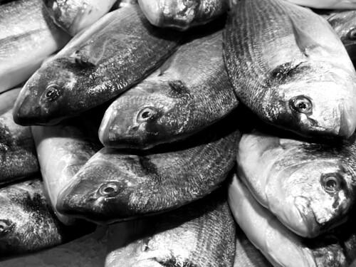 Fish, La Boqueria, Barcelona