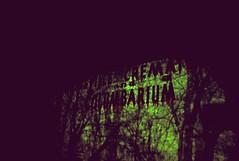 Bloody Crematorium (SnakeTongue) Tags: abandoned film sign 35mm crossprocessed kentucky ky board slide louisville columbarium crematory expired crematorium 64t