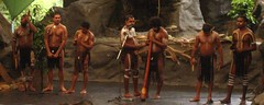 """Proud to be - Aborigine"" (Solinde) Tags: dance australia queensland aborigine cairns didgeridoo tjapukaiaboriginalcentre"