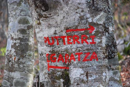 Puttarri_0143