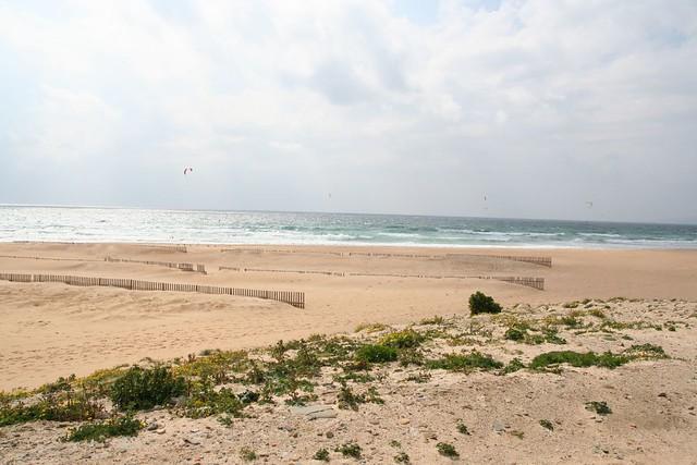 windsurfers at tarifa