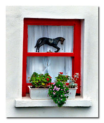 kinsale (.finding.ireland.) Tags: county november 2002 red horse flower window box cork cottage kinsale celtic bigfave abigfave findingireland thanksdee ainmhithe ssccx200 pinterest