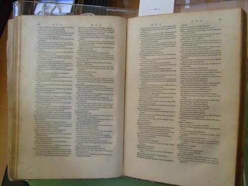 Diccionari. Foto d'Alice Savoie
