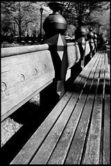 Plenty of Seating (Tina Wann) Tags: city nyc newyorkcity ny newyork photoshop canon rebel xt centralpark manhattan canonrebelxt ryleerider tinawann