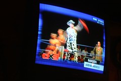 Flamboyant Luchador (on TV)