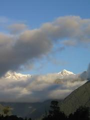 mount tasman & mount cook (nyaa_birdies_perch) Tags: newzealand foxglacier southisland mountcook