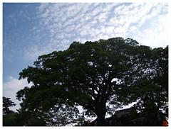 Today's Photo 070512 #04