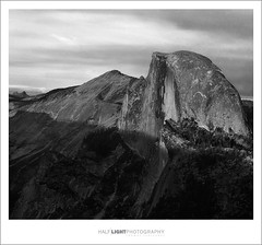 plate 571. (koaflashboy) Tags: mountains film landscape nationalpark fineart halfdome duotone yosemitenationalpark 6x7 ilfordfp4 mamiyarb67 yosemiteblogcom specland hli superbmasterpiece