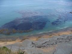 Oamaru (javieriveros) Tags: newzealand mountcook