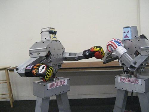 RoboBoxers