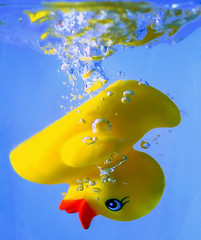 ...making bathtime lots of fun... (dan [durango99]) Tags: blue water yellow fun duck bravo rubber getty splash duckie gettyimages a100 jesters supershot magicdonkey instantfave onlythebest mywinner superbmasterpiece superhearts aflicktd phlow:status=back