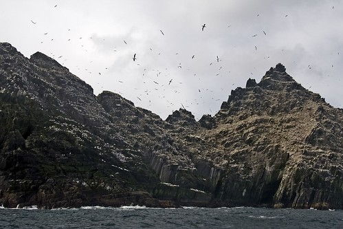 Little Skellig nature reserve