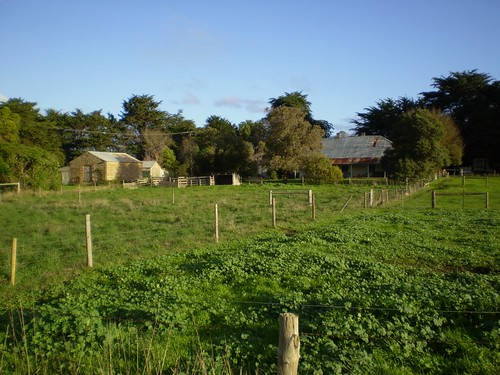 Arno farm at Yahl, near Mt Gambier