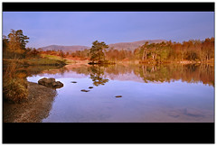 Tarn Hows Dawn (jasontheaker) Tags: trees mountains landscape dawn spring still pond calm nationaltrust conifers landscapephotography tarns sigma1020 sunrise jasontheaker potter langdalepikes tarnhows lakedistrictlake beatrix