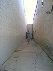 Alley Scoots