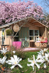 Spring Clean (Princess Tat of Tinkle Shed) Tags: pink art garden studio design spring shropshire stitch shed interiordesign girlsworld