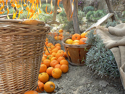 paniers d'oranges amères.jpg