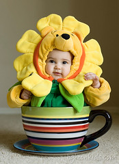 I'm a flower (david_CD) Tags: portrait baby flower cup girl kids children costume kid child tea client prop losangles