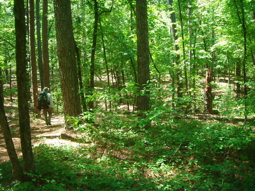 4C-trail.jpg