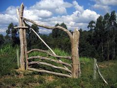Candeia Gate - Matutu - 2006