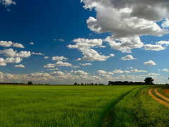 Mar de nubes (Antonio Zamora) Tags: blue espaa paisajes white verde green primavera blanco azul clouds landscape landscapes spring spain paisaje nubes beautifull mancha castillalamancha llanura manchuela manchuelaconquense