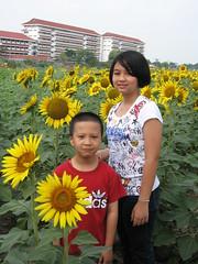 boy & girl in sunflower field