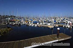 Monterey 08©