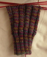 Roza's Socks from Spring 2007 Interweave Knits