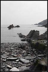 La Losera (DavidGorgojo) Tags: sea beach fog mar stones asturias playa niebla piedras navia occidente naturesfinest puertodevega lalosera