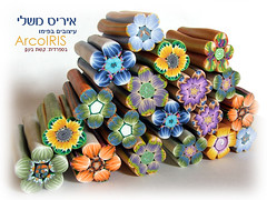 New Millefiori Flower Shaped Canes (Iris Mishly) Tags: ceramica art cane arcoiris israel beads hand handmade jewelry polymerclay fimo clay canes handcrafted decor classes polymer millefiori embelishment arcila ceramicaplastica irismishly   polimerica arcillapolymerica