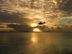 Sunrise 06 May 2007 (╚ DD╔) Tags: trees sea sun male water clouds sunrise palm aircarft maldives didi malediven 日出 hulhumale hulhule supershot maldivians turboprob atcdd superhearts